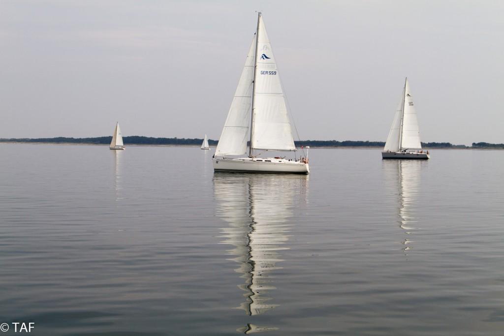 """Thomas Anders - """"Vor Hiddensee. Totale Flaute. Einige Boote melden: Wir fahren rückwärts über Grund."""""""