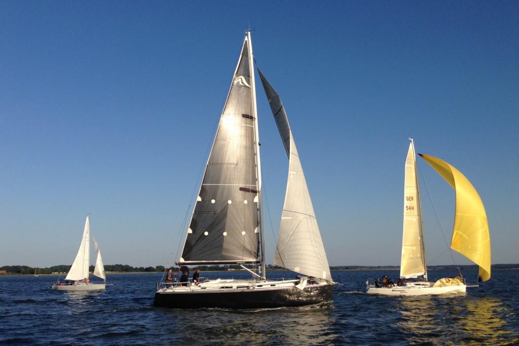 Mascalzone Germano wird 2. in YS1. Dahinter auf Platz 3 Asia de Cuba.